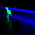 laser-pointer2.jpg